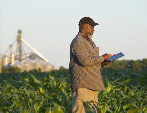 softwares para agricultura